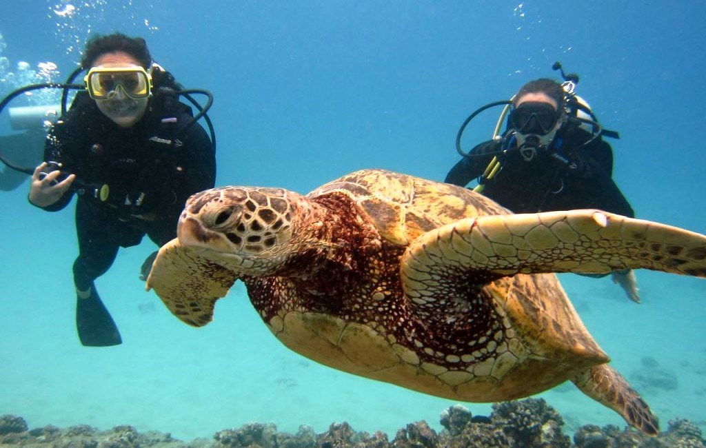 best-places-to-scuba-dive-in-the-world-scuba-in-hawaii-e1438258737768