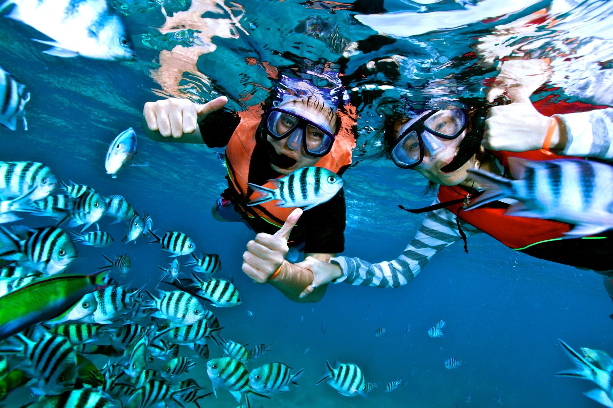 และนีีคือหนึ่งในเหตุผลที่ตัวดำเกรียมกลับมา ดำนำ้ดูปะการังชมปลาทะเลอย่างเมามัน พร้อมๆกับญาติๆพี่ๆน้องๆทั้งหลาย ต้องกลับไปอีกแน่นอน  แต่ที่อยากได้มากที่สุดก็คือกล้องถ่ายรูปใต้นำ้ที่ตากล้องใช้อะ Canon EOS 5D Mark II กับเลนส์ Canon EF 16-35mm f/2.8 L II