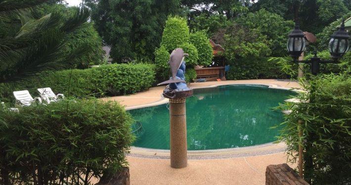 pool-1-710x375