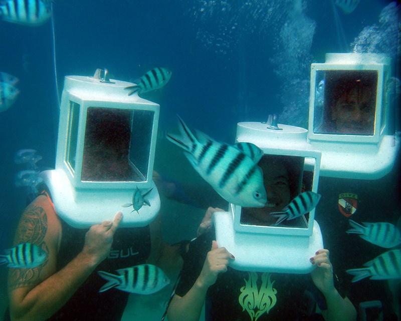 sea-walkers-in-koh-tao